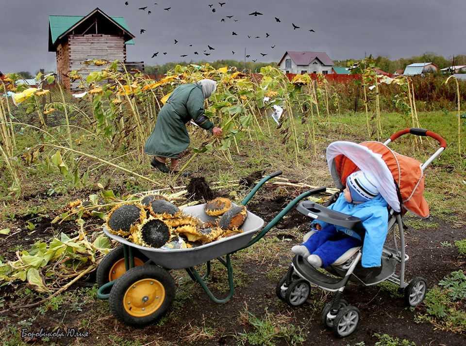 Челябинские фотографы завоевали международные призы
